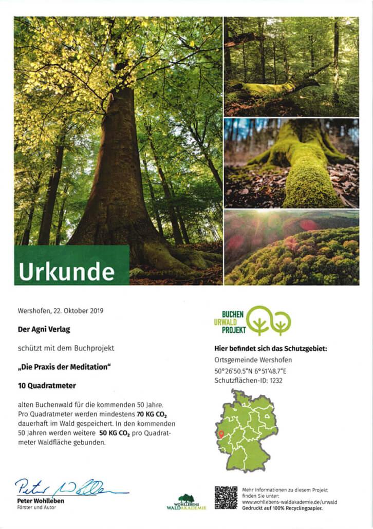 Urkunde Patenschaft Buchen-UrwaldProjekt Waldakademie