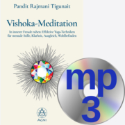 Vishoka Meditation Cover Audio-Download
