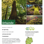 Urkunde Essenz des Seins - Patenschaft Waldakademie