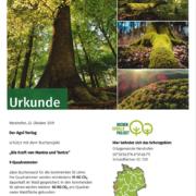 Zertifikat Kraft von Mantra und Yantra - Patenschaft Waldakademie