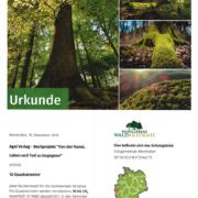 Urkunde Kunst Leben und Tod zu begegnen - Patenschaft Waldakademie
