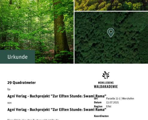 Zertifikat Zur Elften Stunde - Patenschaft Waldakademie